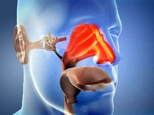 Лікування захворювань ЛОР-органів